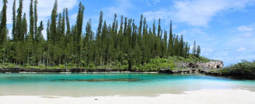 Une magnifique plage de l'île des Pins